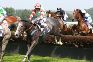Deauville-Clairefontaine_obstacle_2
